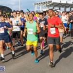 Race Weekend 10K Bermuda, January 17 2015-16