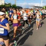 Race Weekend 10K Bermuda, January 17 2015-24