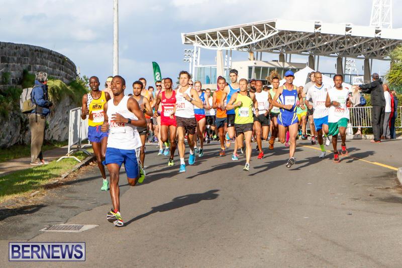Race-Weekend-10K-Bermuda-January-17-2015-8