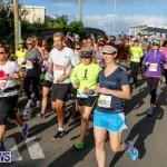 Race Weekend 10K Bermuda, January 17 2015-80