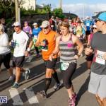 Race Weekend 10K Bermuda, January 17 2015-94