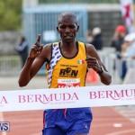 Race Weekend 10K Finish Line Bermuda, January 17 2015-1