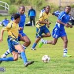 St David's vs Young Men Social Club Football Bermuda, January 11 2015-17