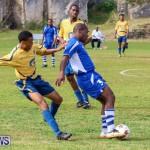 St David's vs Young Men Social Club Football Bermuda, January 11 2015-22