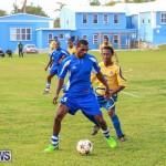St David's vs Young Men Social Club Football Bermuda, January 11 2015-54