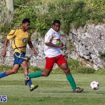 St David's vs Boulevard Bermuda, January 4 2015-22