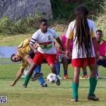St David's vs Boulevard Bermuda, January 4 2015-65