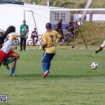 St David's vs Boulevard Bermuda, January 4 2015-71