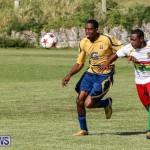 St David's vs Boulevard Bermuda, January 4 2015-9