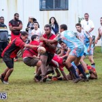 Stephen Edwards Memorial Bermuda, January 1 2015-33