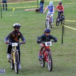 Tokio Youth MTB Bermuda, January 10 2015-2