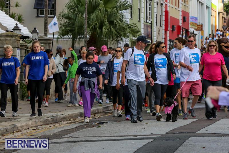 Argus-Walk-Bermuda-February-22-2015-19