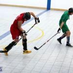 Ball Hockey 2015Feb22 1st game (10)