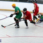 Ball Hockey 2015Feb22 1st game (18)