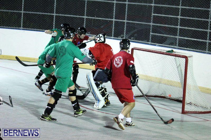 Ball-Hockey-2015Feb22-1st-game-3