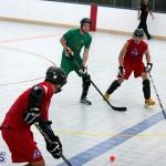 Ball Hockey 2015Feb22 1st game (4)