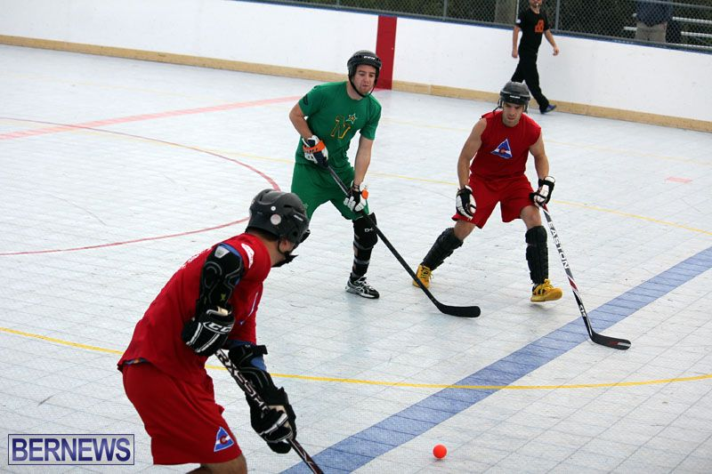 Ball-Hockey-2015Feb22-1st-game-4