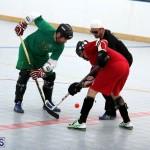 Ball Hockey 2015Feb22 1st game (5)