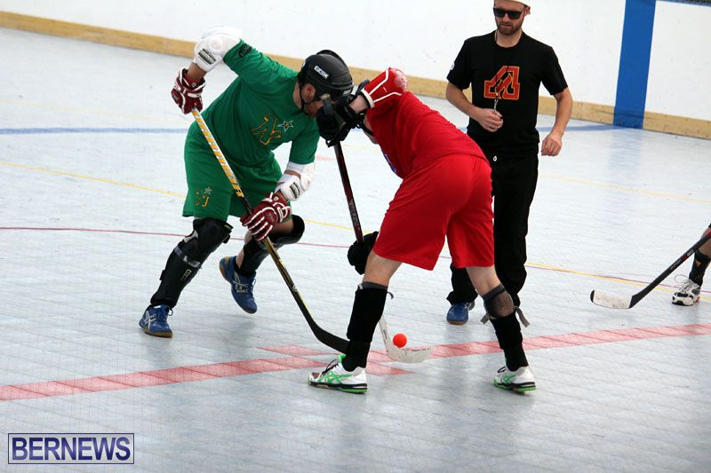 Ball-Hockey-2015Feb22-1st-game-6