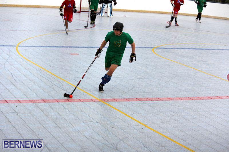 Ball-Hockey-2015Feb22-1st-game-7
