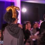 CedarBridge Academy Spritz Hair Show Bermuda, January 31 2015-14