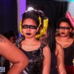 CedarBridge Academy Spritz Hair Show Bermuda, January 31 2015-26