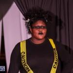 CedarBridge Academy Spritz Hair Show Bermuda, January 31 2015-33