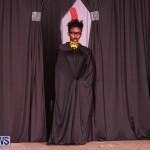 CedarBridge Academy Spritz Hair Show Bermuda, January 31 2015-6