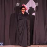 CedarBridge Academy Spritz Hair Show Bermuda, January 31 2015-8