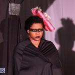 CedarBridge Academy Spritz Hair Show Bermuda, January 31 2015-9