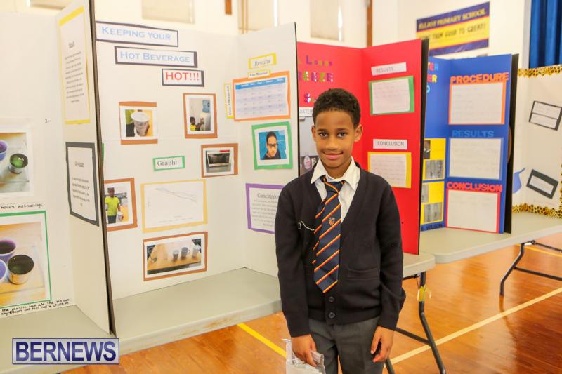 Elliott-Primary-Science-Fair-Bermuda-February-25-2015-10