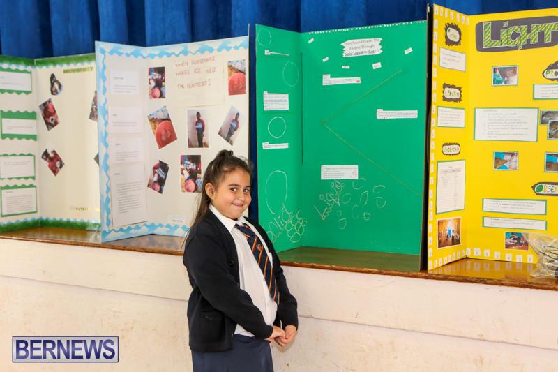 Elliott-Primary-Science-Fair-Bermuda-February-25-2015-11