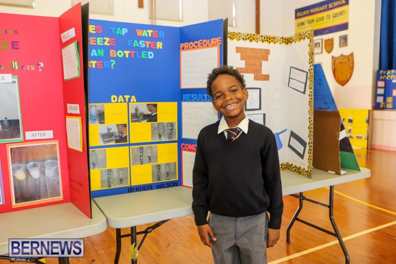 Elliott-Primary-Science-Fair-Bermuda-February-25-2015-12