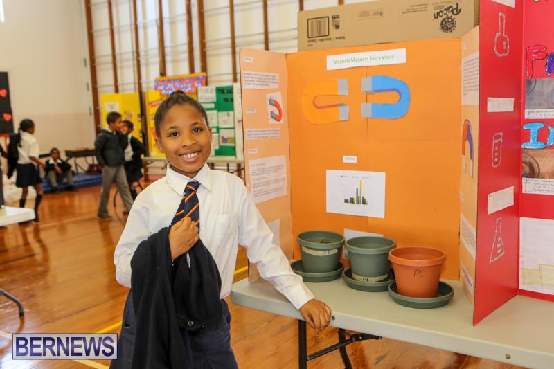 Elliott-Primary-Science-Fair-Bermuda-February-25-2015-13