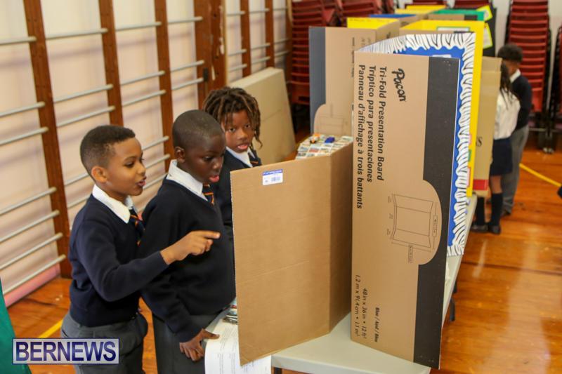 Elliott-Primary-Science-Fair-Bermuda-February-25-2015-14