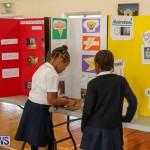 Elliott Primary Science Fair Bermuda, February 25 2015-15