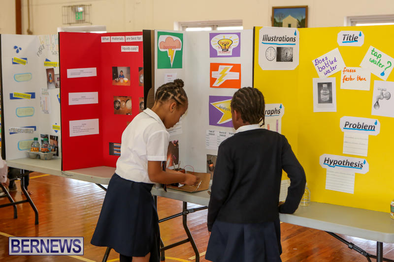 Elliott-Primary-Science-Fair-Bermuda-February-25-2015-15