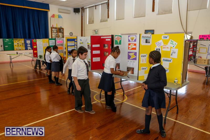 Elliott-Primary-Science-Fair-Bermuda-February-25-2015-16