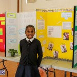 Elliott Primary Science Fair Bermuda, February 25 2015-17