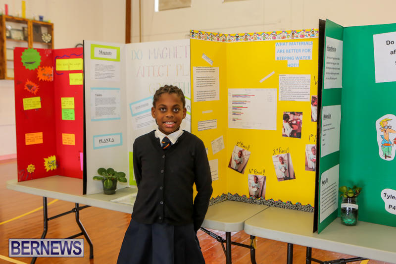 Elliott-Primary-Science-Fair-Bermuda-February-25-2015-17