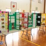 Elliott Primary Science Fair Bermuda, February 25 2015-19