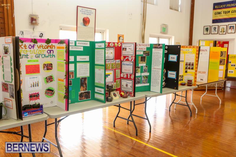 Elliott-Primary-Science-Fair-Bermuda-February-25-2015-19