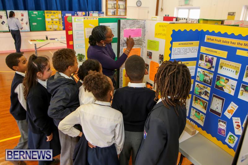 Elliott-Primary-Science-Fair-Bermuda-February-25-2015-2