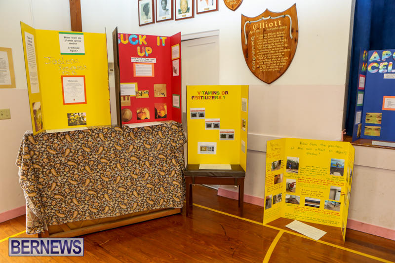 Elliott-Primary-Science-Fair-Bermuda-February-25-2015-21