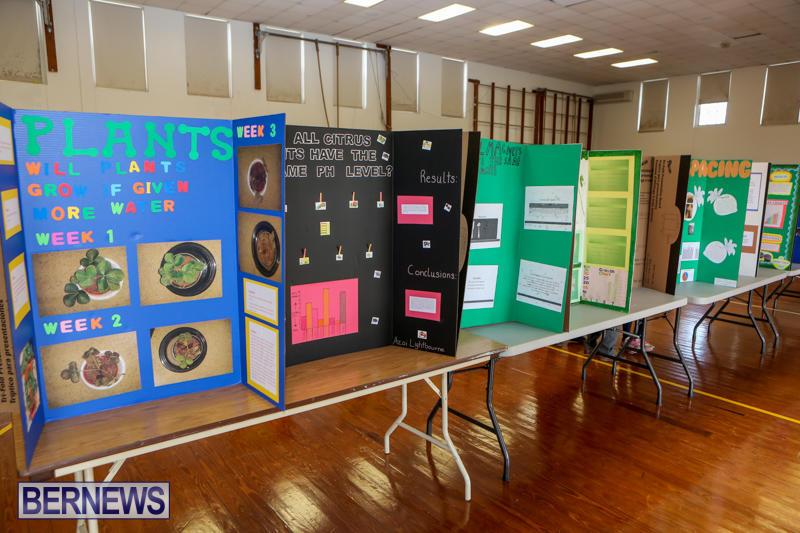 Elliott-Primary-Science-Fair-Bermuda-February-25-2015-22