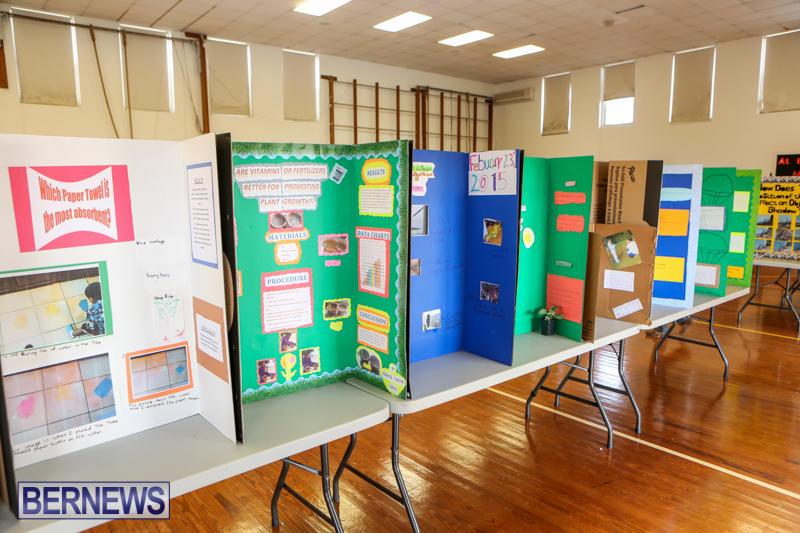 Elliott-Primary-Science-Fair-Bermuda-February-25-2015-23