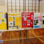 Elliott Primary Science Fair Bermuda, February 25 2015-24
