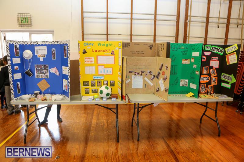 Elliott-Primary-Science-Fair-Bermuda-February-25-2015-26