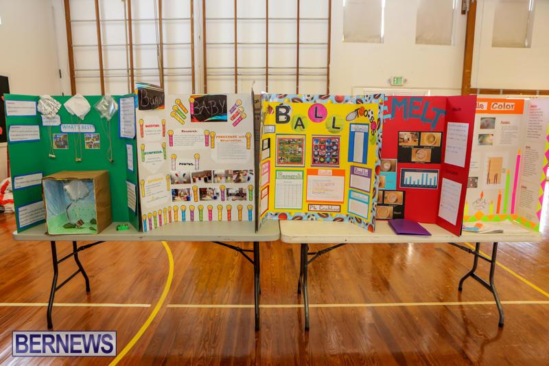 Elliott-Primary-Science-Fair-Bermuda-February-25-2015-27