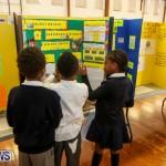 Elliott Primary Science Fair Bermuda, February 25 2015-28